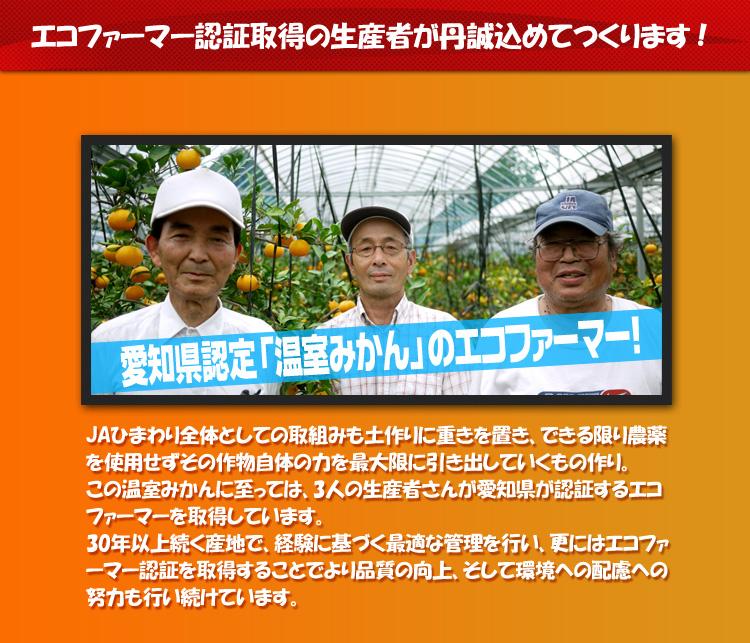 エコファーマー認証取得の生産者が丹精込めて作ります!JAひまわり全体としての取組みも土作りに重きを置き、できる限り農薬を使用せずその作物自体の力を最大限に引き出していくもの作り。この温室みかんに至っては、3人の生産者さんが愛知県が認証するエコファーマーを取得しています。30年以上続く産地で、経験に基づく最適な管理を行い、更にはエコファーマー認証を取得することでより品質の向上、そして環境への配慮への努力も行い続けています。