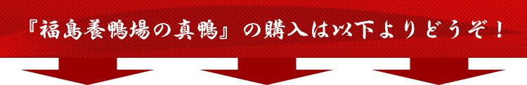 『福島養鴨場の真鴨』の購入は以下よりどうぞ!