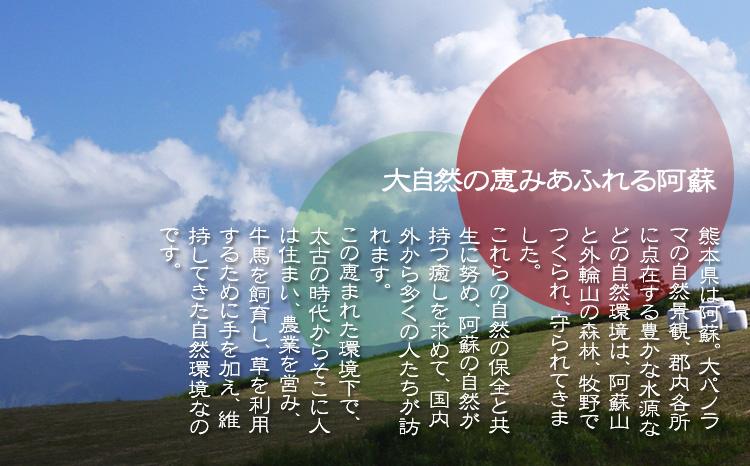 """「大自然の恵みあふれる阿蘇」     熊本県は阿蘇。大パノラマの自然景観、郡内各所に点在する豊かな水源などの自然環境は、阿蘇山と 外輪 山の森林、牧野でつくられ、守られてきました。これらの自然の保全と共生に努め 、阿蘇の自然が持つ""""癒し""""などを求めて、国内外から多くの人たちが訪れます。     この恵まれた環境下で、太古の時代からそこに人は住まい、農業を営み、牛馬を飼育し、草を利用するために手を加え、維持してきた自然環境なのです。"""