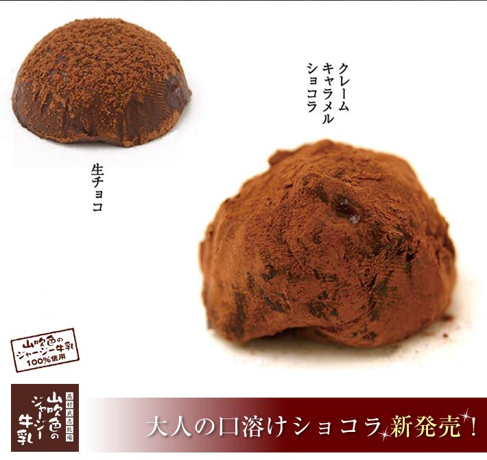 大人の口溶けショコラ新発売!